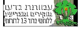 עמותת גדעון